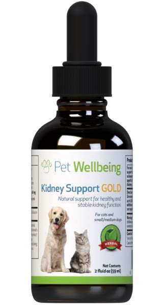 kidney support gold maintains healthy kidney function
