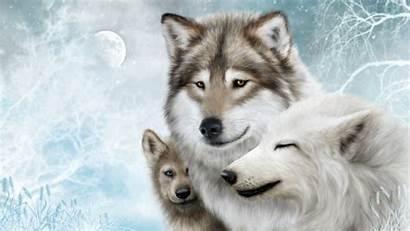 Wolves Moon Predators Wallpapers