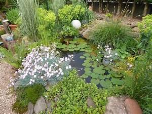 Kleiner Gartenteich Anlegen : kleiner gartenteich simple kleiner gartenteich an einer ~ Michelbontemps.com Haus und Dekorationen