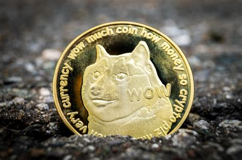 Dogecoin and Stellar: the real winners of the bull run ...