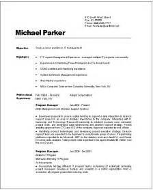 Information Technology Resume Examples Resume Template 2017