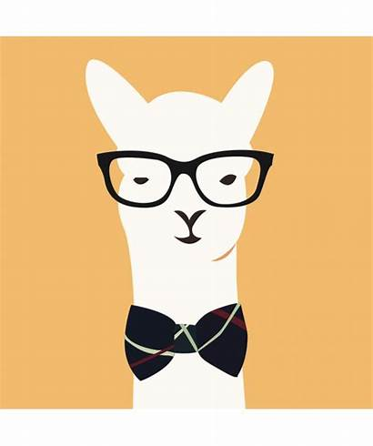Llama Clipart Alpaca Cartoon Head Lama Clip
