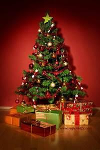 Christmas tree hd images - SUPERHDFX