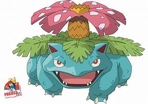 003 Venusaur Vector Render/Extraction by TattyDesigns on ...