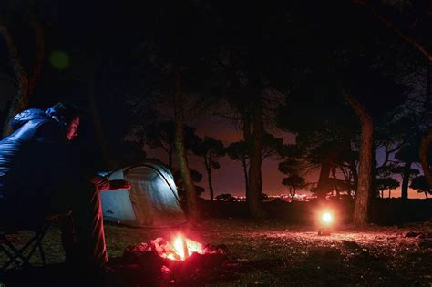 Campfire Camping Forest Night Bonfire Fire Tent Camp