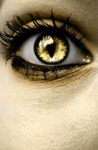 Golden Cat Eye Contacts