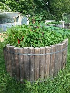 Winterschutz Für Pflanzen Selber Bauen : rundhochbeet mit pflanzen werkbox3 ~ Whattoseeinmadrid.com Haus und Dekorationen