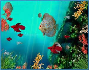 Free Moving Screensaver Animated Coral Reef