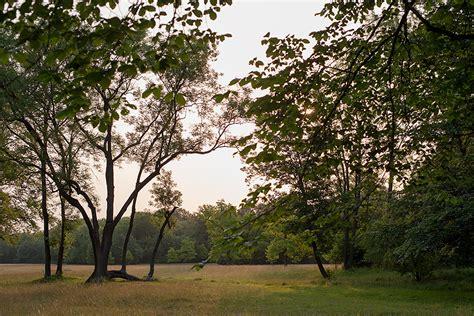 Englischer Garten München Nordteil by Christian Kunz M 252 Nchen Photographien Galerie Natur