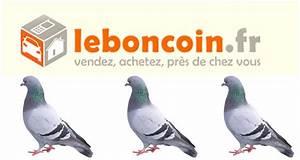 Le Bpn Coin : leboncoin apr s les arnaques d couvrez le harc lement sexuel undernews ~ Maxctalentgroup.com Avis de Voitures