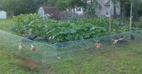 put  mesh tunnel   garden   genius