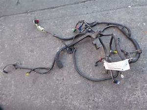 Citroen Berlingo Engine Wiring Harness  1 4ltr Petrol