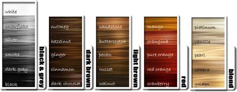 17 Best Ideas About Hair Color Charts On Pinterest