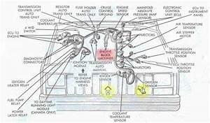 Engine Wiring Diagram Jeep Tj Diesel Engine Wiring Diagram Jeep Tj Diesel