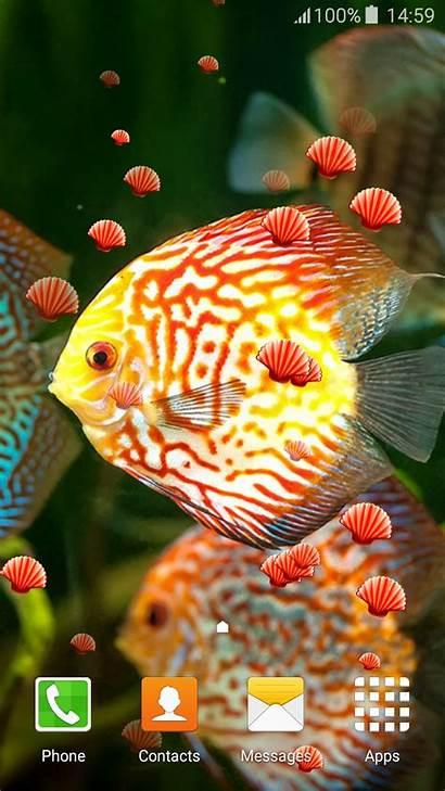 Neon Fish Wallpapers Apps