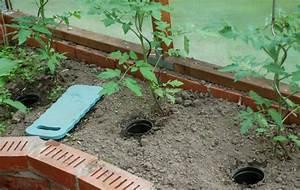 Tomaten Wann Pflanzen : tomaten gie en wir sind im garten ~ Frokenaadalensverden.com Haus und Dekorationen