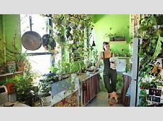 Growing A Jungle In My New York Apartment One News Page