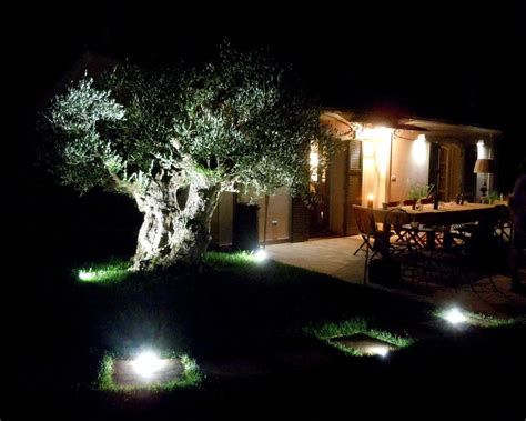 illuminazione giardino led illuminazione alberi da giardino fantajumpy