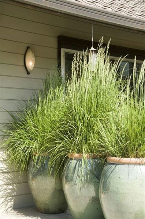 lemongrass landscaping 12 landscaping ideas to upgrade your backyard this summer