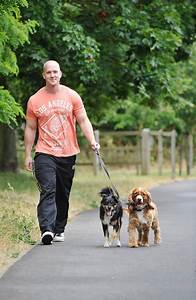 dog walker high wycombe dog walking services With looking for a dog walker