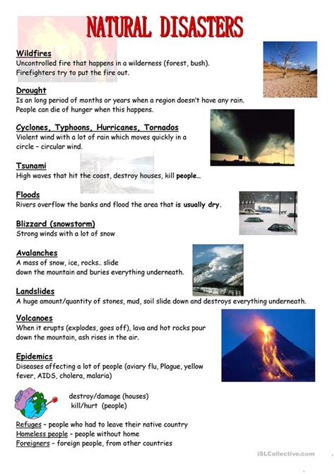 natural disasters worksheet  esl printable