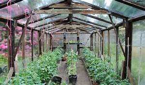 Gewächshaus Bepflanzen Plan : tomaten anbau im gew chshaus und folientunnel plantura ~ Lizthompson.info Haus und Dekorationen