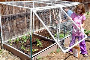 Grated square foot garden hinged door cage for Garden cage