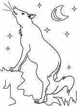 Coyote Coloring Printable Pages Wile Road Cool2bkids Howling Desert Getcoloringpages Popular sketch template