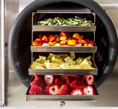 freeze dryer enables   freeze dry  foods