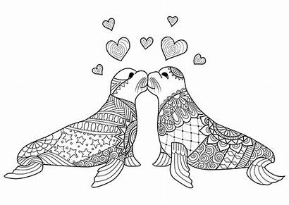 Coloring Adult Kissing Seals Hand Each Drawn