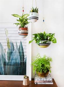 An Indoor Hanging Garden With Anthropologie A How To