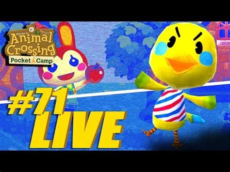 twiggy tweets animal crossing pocket camp  stream