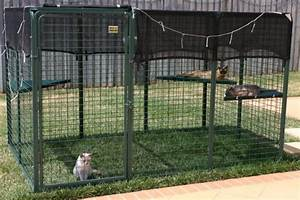 risks of letting your cat outside cute cats With premade dog kennels