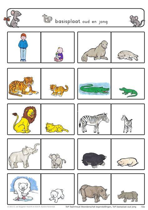 verkleinwoorden dieren