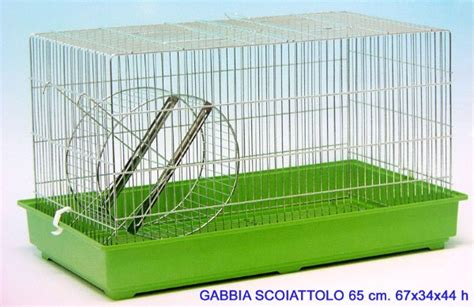 Gabbia Per Scoiattolo by Gabbia Scoiattolo Zincata 65 Vendita Di Articoli Per Animali