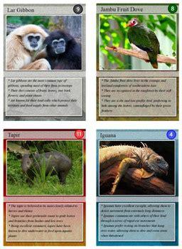rainforest animal trading cards  technology integration