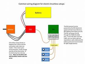 Attachment Browser  Brushless Wiring Diagram Jpg By Loose Screws