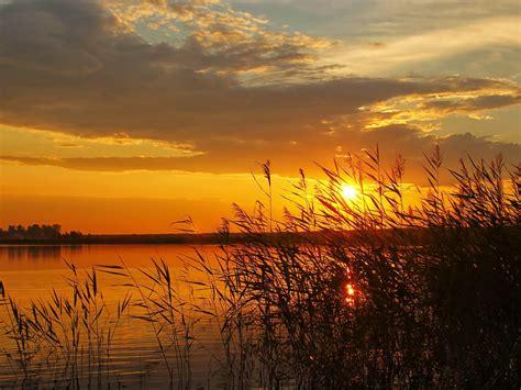 sunset lake boat cane reeds hd wallpaper