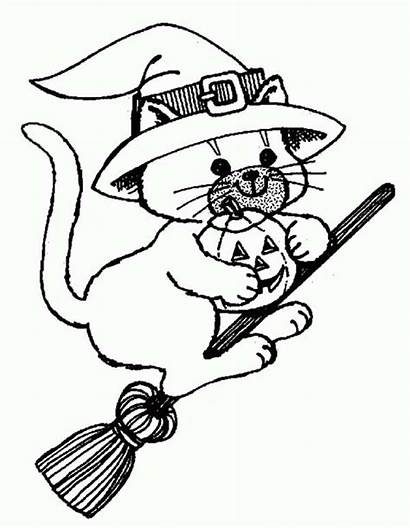 Witch Halloween Coloring Cat Riding Broomstick Broom