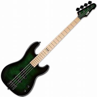 Sunburst 4fm Mendoza Esp Thru Bass Marco