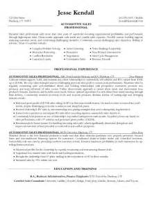 salesperson resume free excel templates