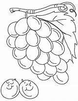 Grapes Coloring Pages Drawing Sleeping sketch template