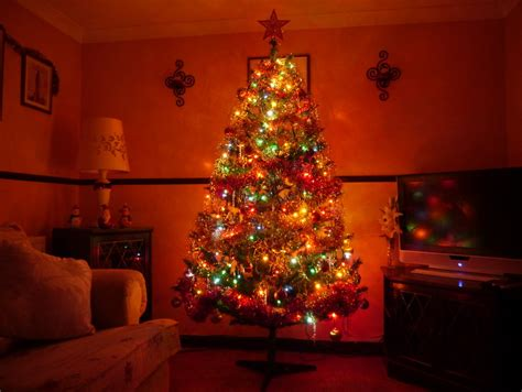 our christmas tree put up 12 12 2012 by hellonlegs on