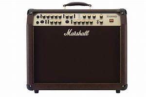 8 Best Amps For Acoustic Guitars Reviews  Buying Guide