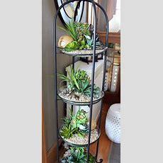 26 Mini Indoor Garden Ideas To Green Your Home