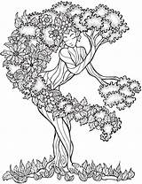 Tree Coloring Pages Printable Getcolorings sketch template