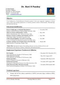 basic resume sle format professor sle resume