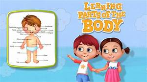 Learning Parts Of The Body