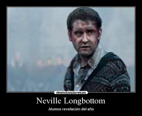 Neville Longbottom Meme - the gallery for gt that awkward moment when neville becomes the hottest