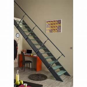 Escalier Escamotable Isolé Leroy Merlin : escalier 4 marches leroy merlin ~ Melissatoandfro.com Idées de Décoration